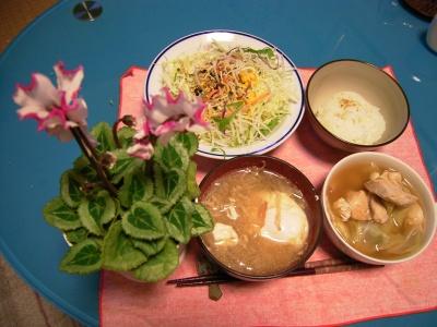 R0029047チキンとキャベツと豆のスープ煮、落とし卵の味噌汁、野菜サラダ_400.jpg