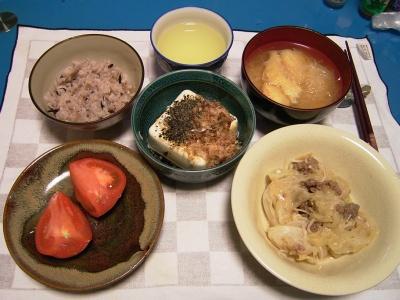 R0031972夜-キャベツと挽肉の蒸し煮、冷奴、お味噌汁、トマト、五穀米ご飯_400.jpg
