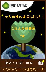 090809大人の木2本目夜.jpg