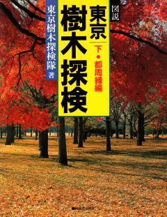 本:樹木探検下表_240.png