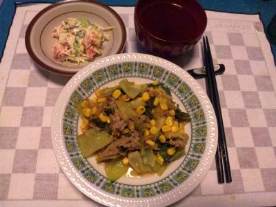 SBSH0202_0521夜-野菜とポーク炒め物、サラダ_400.jpg