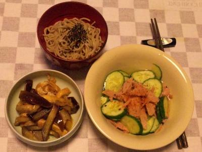SBSH0224_0907夜-蕎麦、なすと揚げの炒め、ツナサラダレモンソース_400.jpg
