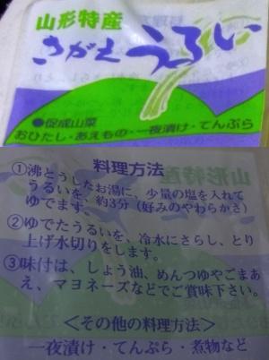 RIMG0033_0512うるいの説明合成_300.JPG