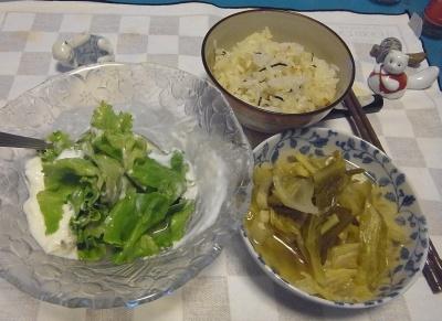 RIMG0030_0610夜-ヨーグルトサラダ、キャベツ煮、かやくご飯_400.jpg