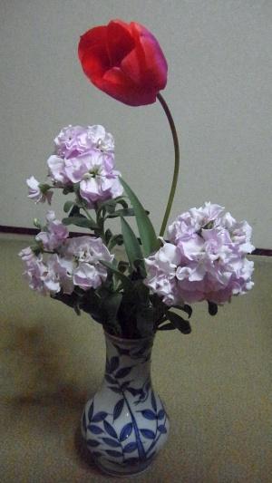 RIMG0009花瓶のチューリップとストック_300.jpg