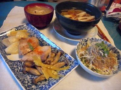 RIMG0004_0220夜-ポークソテー、サラダ、蕎麦、スープ_400.jpg