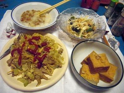 RIMG0004_0607夜-焼きそば、厚揚げ煮、卸納豆、サラダ_400.jpg