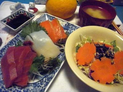 R0014065_0315夜-お刺身、サラダ、味噌汁、夏蜜柑_400.jpg