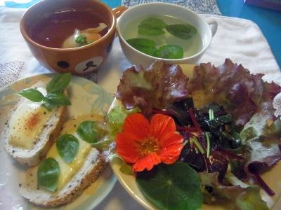R0014455_0622昼-バジルとチーズトースト、MyGレタスとスイスチャードとナスタチウムサラダ、パセリと落とし卵スープ、ハーブティ_400.jpg
