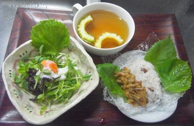 R0016861_0828昼-自作器で卵豆苗サラダ、先生のお皿でお赤飯と牛蒡揚げ、ゴーヤスープ_400.jpg