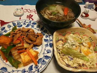 DSC_1503_0129夜-ポークと厚揚げ炒め、サラダ、温蕎麦_400.jpg