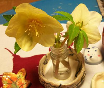 DSC_1640_0219夜-食卓の花、クリスマスローズ_400.jpg