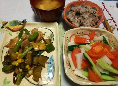 DSC_1884_0324夜-チキンとナスの炒め物、トマトサラダ、味噌汁、小豆ご飯_400.jpg