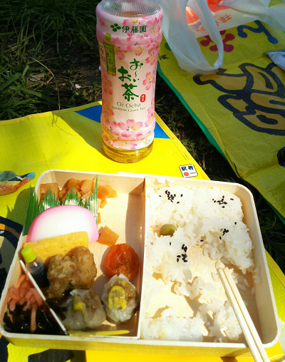 DSC_1899_0328昼・お花見-崎陽軒シュウマイ弁当と桜模様のお茶 食べかけ_400.jpg