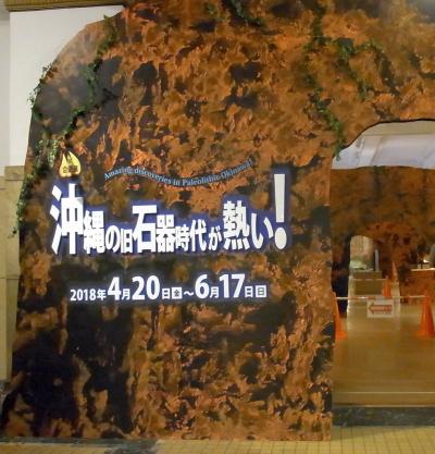 R0036279沖縄の旧石器時代が熱い_400.jpg