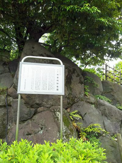 DSC_2676旧岩崎邸庭園_400.jpg