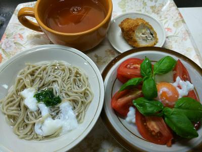DSC_3053_0627昼-バジルトマト卵サラダ、ささみかつ、流水麺蕎麦_400.jpg