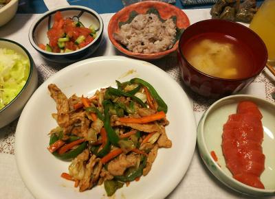 DSC_3305_0723夜-ポークソテー甜麺醤、辛子明太子、トマトサラダ、レタス、みそ汁、雑穀ご飯_400.jpg