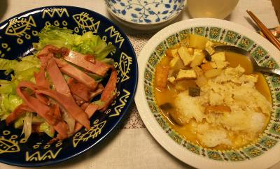 DSC_3361_0727夜-タイカレー、焼き豚サラダ_400.jpg