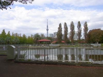 R0039452猿江公園の風景_400.jpg