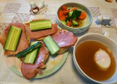 DSC_4712_1118昼-ポークサンド、卵スープ、人参とキュウリサラダ_400.jpg