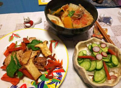 DSC_5341_1228夜-ポークステーキ、ラディッシュサラダ、かき揚げとかぼちゃのうどん_400.jpg