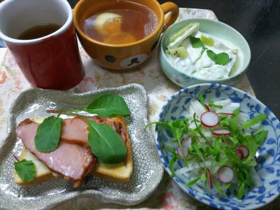DSC_5349_1229昼-ポークにラディッシュの葉トースト、サラダ春菊とラディッシュサラダ、キーウィヨーグルト、温泉卵スープ_400.jpg