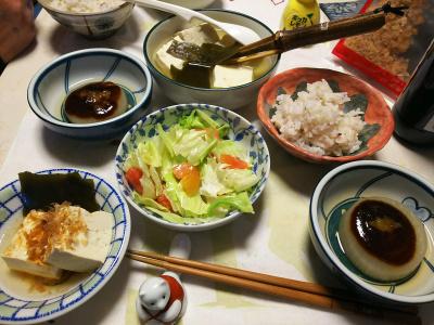 DSC_5526_0110夜-もめん湯豆腐、風呂吹き大根、サラダ、雑穀ご飯_400.jpg