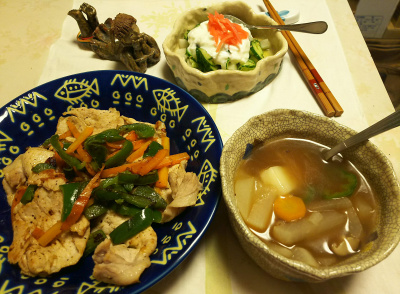 DSC_5859_0219夜-ポークジンジャー、野菜スープ、キュウリヨーグルト_400.jpg