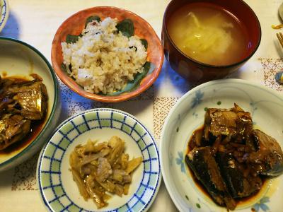DSC_6426_0409昼-サンマの生姜煮、ゴボウと豚のきんぴら風、新キャベツの味噌汁、縄文ご飯_400.jpg