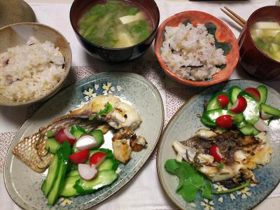 DSC_6932_0516夜-鯛のポワレ、採れたてラディッシュとキュウリ添え、採れたてラディッシュの葉の味噌汁、雑穀ごはん_400.jpg