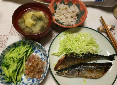 DSC_7161_0605夜-サンマ焼きとキャベツ、アジのたたきとキュウリ、味噌汁、雑穀ごはん_400.jpg