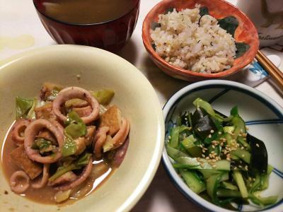 DSC_7366_0621夜-イカと厚揚げの炒めもの、キュウリの酢の物、スープ、雑穀ごはん_400.jpg
