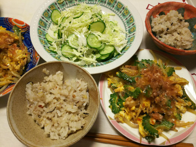 DSC_7587_0628夜-ゴーヤチャンプルー、サラダ、雑穀ごはん_400.jpg
