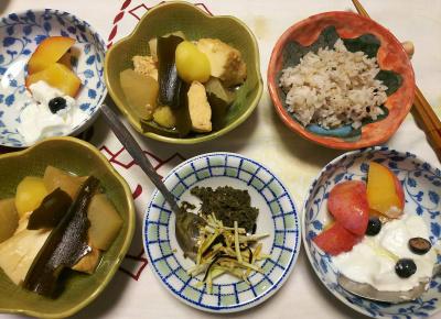 DSC_8243_0819夜-ブルーベリー3個とプラム貴陽ヨーグルト、鶏煮物、大根皮の昆布和えと茶葉佃煮、縄文ご飯_400.jpg