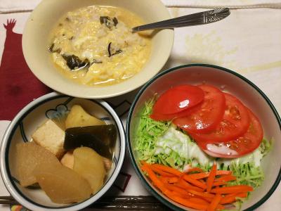 DSC_8306_0823夜-卵雑炊、煮物、トマトとキャベツと人参サラダ_400.jpg