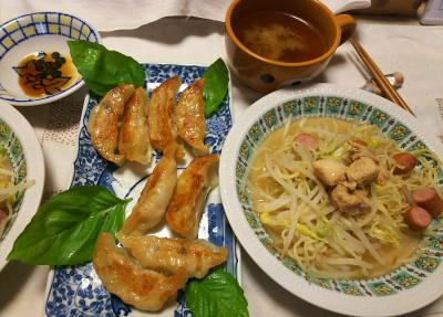 DSC_8910_1008夜-餃子、鶏焼きそば、スープ_400.jpg