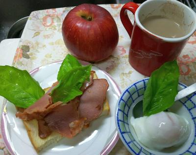 DSC_9129_1025昼-焼豚バジルトースト、温泉卵、リンゴ(シナノスイート)_400.jpg
