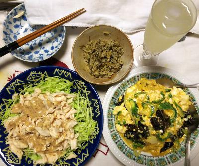 DSC_9214_1030夜-蒸し鶏サラダ、ゴーヤチャンプルー、茶葉ご飯、シークヮーサーソーダ_400.jpg