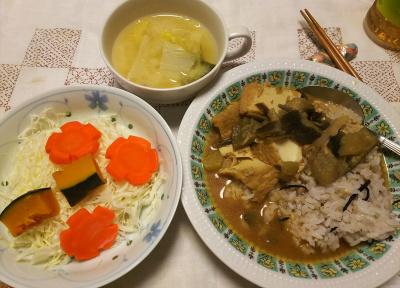 DSC_9618_1122夜-なすカレー、かぼちゃとキャベツサラダ、味噌汁_400.jpg
