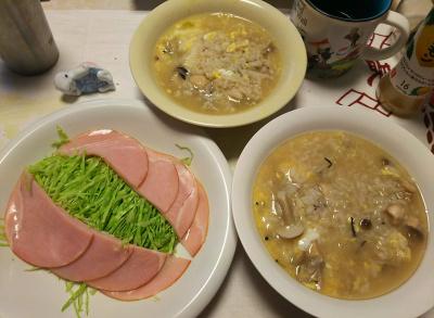 DSC_1206_0115昼-ハムサラダ、卵雑炊_400.jpg