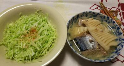 DSC_1180_0116夜-水煮サバ缶と筍の煮物、キャベツサラダ_400.jpg