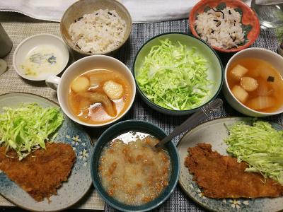 DSC_1525_0216夜-アジフライ、キャベツ、おろし納豆、麩のスープ、雑穀ごはん_400.jpg