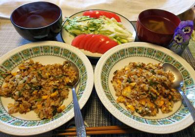 DSC_0158_0316昼-肉そぼろチャーハン、トマト・きゅうりサラダ、スープ_400.jpg