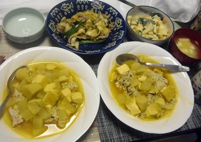 R0018081_0511夜-大根チキンカレー、豚肉とキャベツ、ピーマン炒め、ポテトサラダ、豆腐の味噌汁_400.jpg