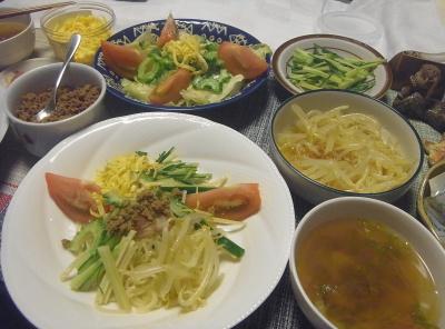 R0018760_0722夜-冷やし中華肉味噌、錦糸卵、もやし、スープ、ゴーヤNo13(4個目)サラダ_400.jpg