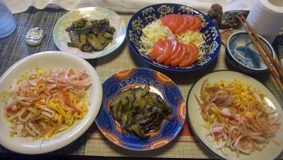 R0018855_0802昼-冷やし中華、ナスとピーマンの味噌炒め、トマトキャベツサラダ_400.jpg