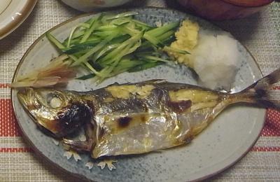 R0018934_0810夜-釣った鯵の塩焼き、キュウリ、ミョウガ、おろしショウガ添え_400.jpg