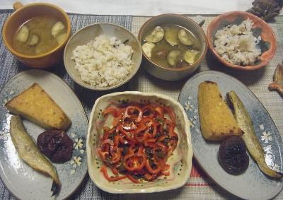 R0019524_1010夜-こまいと厚揚げと椎茸焼き、赤ピーマン茶葉佃煮サラダ、なすスープ、雑穀ごはん_400.jpg