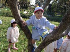 柿畑・3.JPG